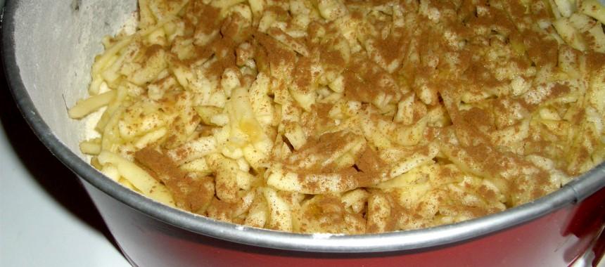 Tarta de Manzana Polaca